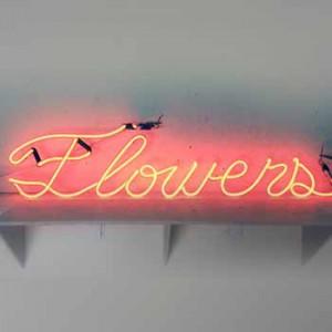 flower flowers florist