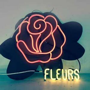 Rose Petal Fleurs Flower