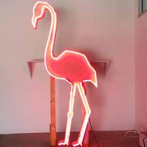 flamingo tropic tropical palm trees tree