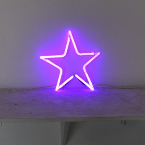 "Purple Star - 10"" x 11"" - Neon Only"