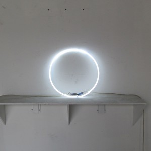 "6500 White - 17"" Circle - Loose Neon ring"